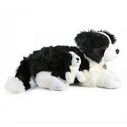 Rappa Plyšový pes Border Kólia s mláďaťom, 45 cm